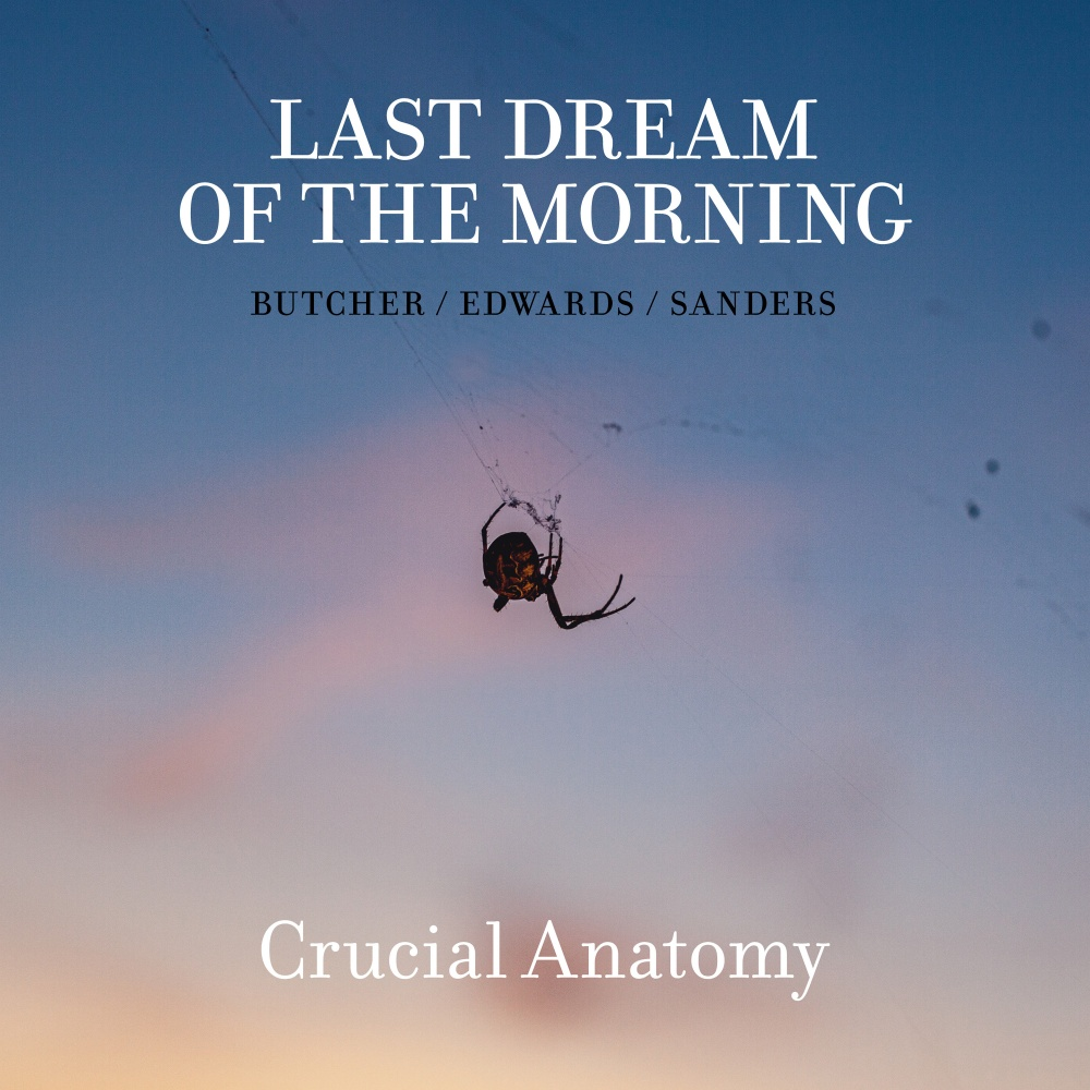 Last Dream Of The Morning – Crucial Anatomy